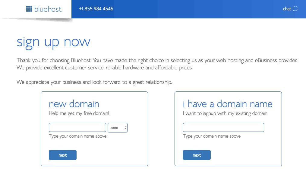 bluehost domain choose