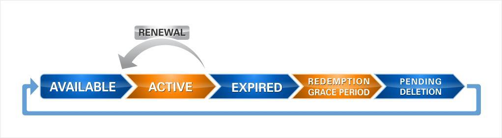domain name lifecycle